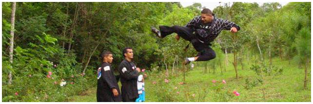 Mestre Kick